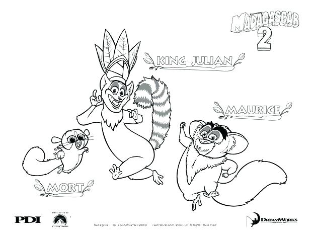 620x479 Coloring Page L Is For Or Ring Tailed Lemur Coloring Pages