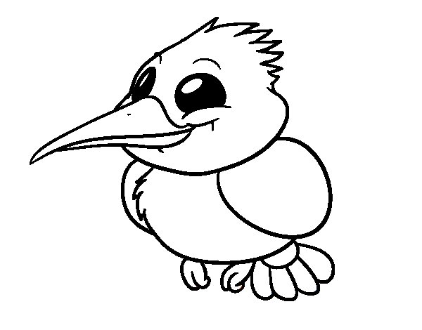 600x470 Common Kingfisher Coloring Page