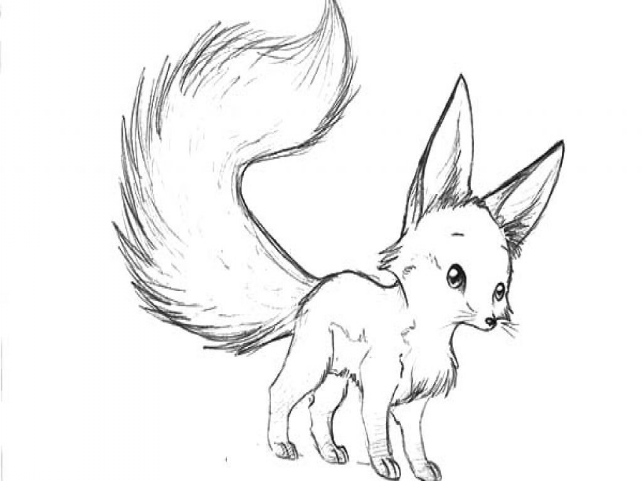 Kitsune Coloring Pages at GetDrawings   Free download