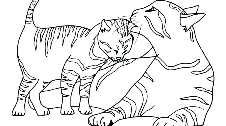 770x430 Kitten Coloring Pages Cat Mother And Kitten Free Online Kitten