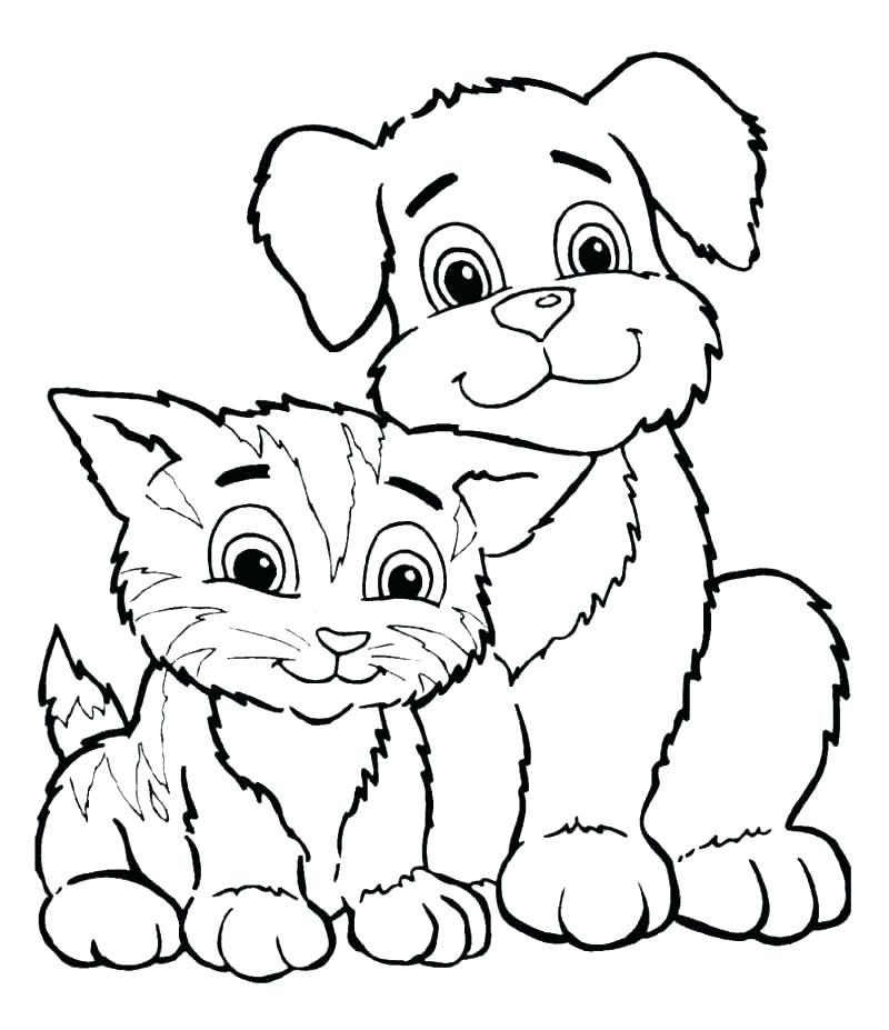 800x927 Kitten Coloring Page Kitten Coloring Pages Printable Printable