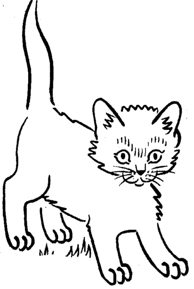 646x962 Kitten Coloring Pages