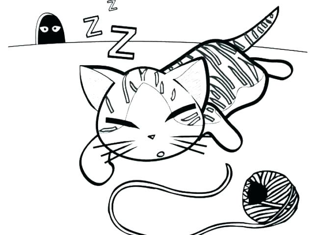 640x480 Kitten Coloring Page