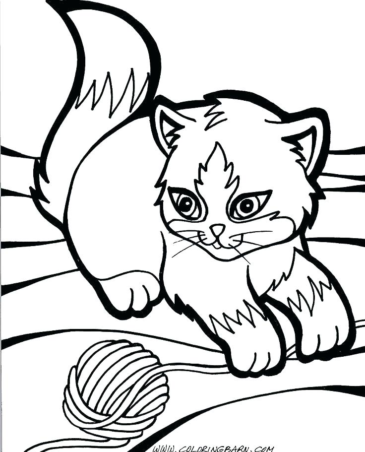 736x911 Kitten Coloring Pages Printable Kitten Color Pages Kittens