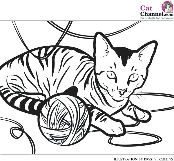 600x557 Kitty Cat Coloring Pages Kitty Color Pages Hello Kitty Hello Kitty