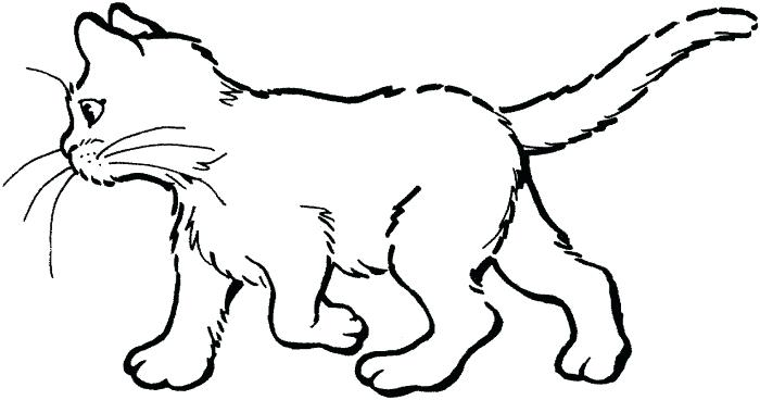 700x368 Kitty Cat Coloring Pages