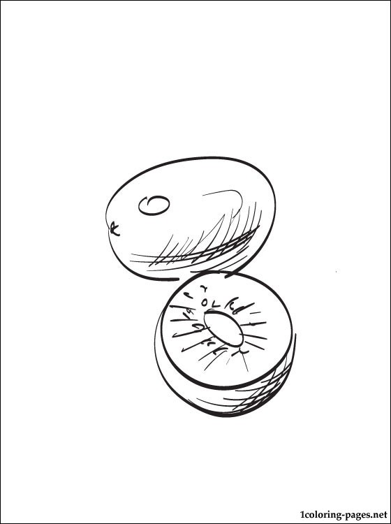 560x750 Kiwi Coloring Page For Free Coloring Pages