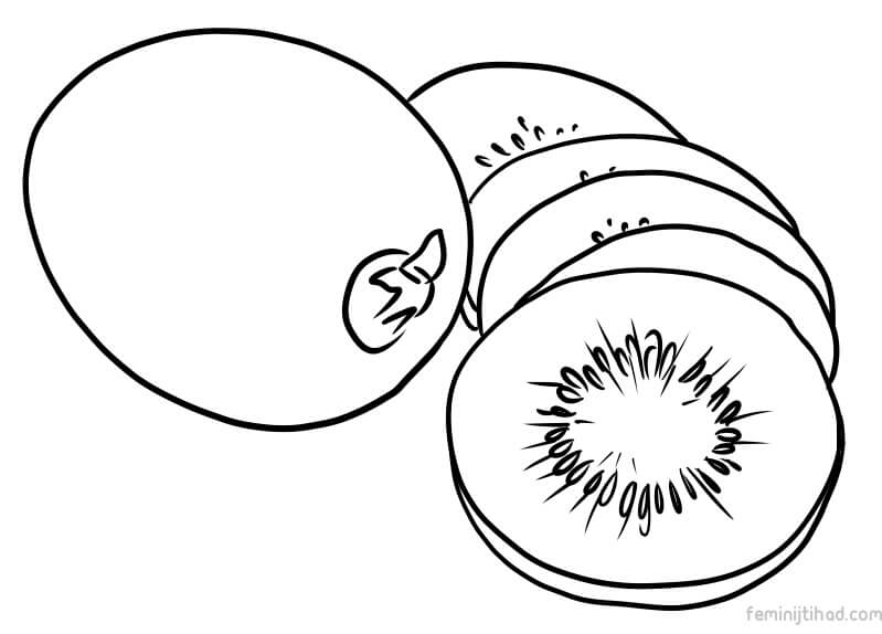 799x574 Printable Kiwi Coloring Pages To Print Coloring Pages For Kids