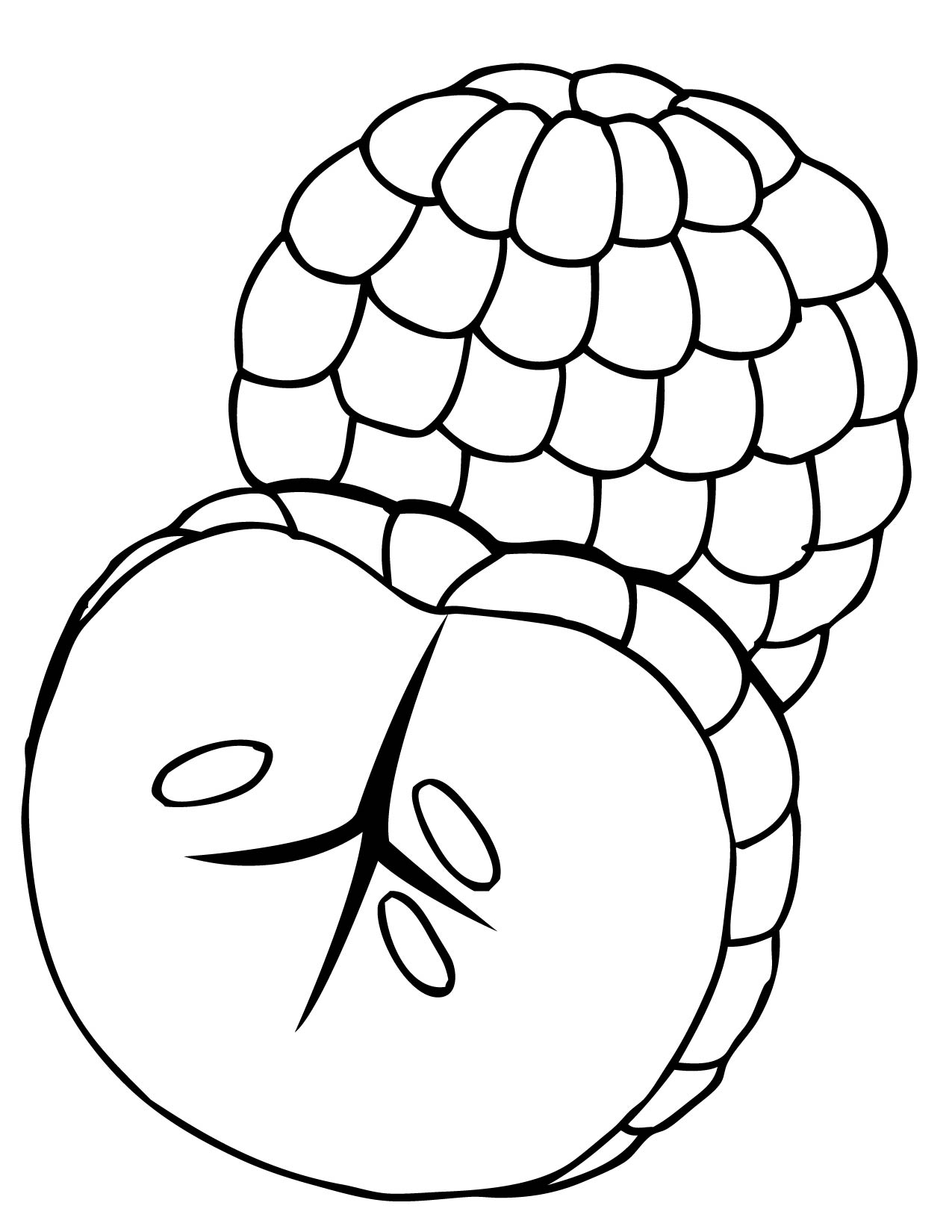 1275x1650 Inspiring Ideas Fruits Coloring Pages Kiwi Fruit Page Free