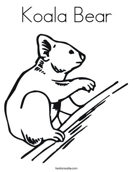 468x605 Koala Bear Coloring Page