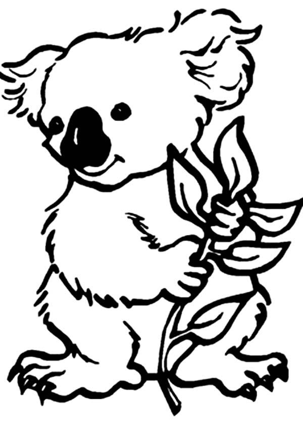 600x851 Koala Bear Coloring Page Color Luna