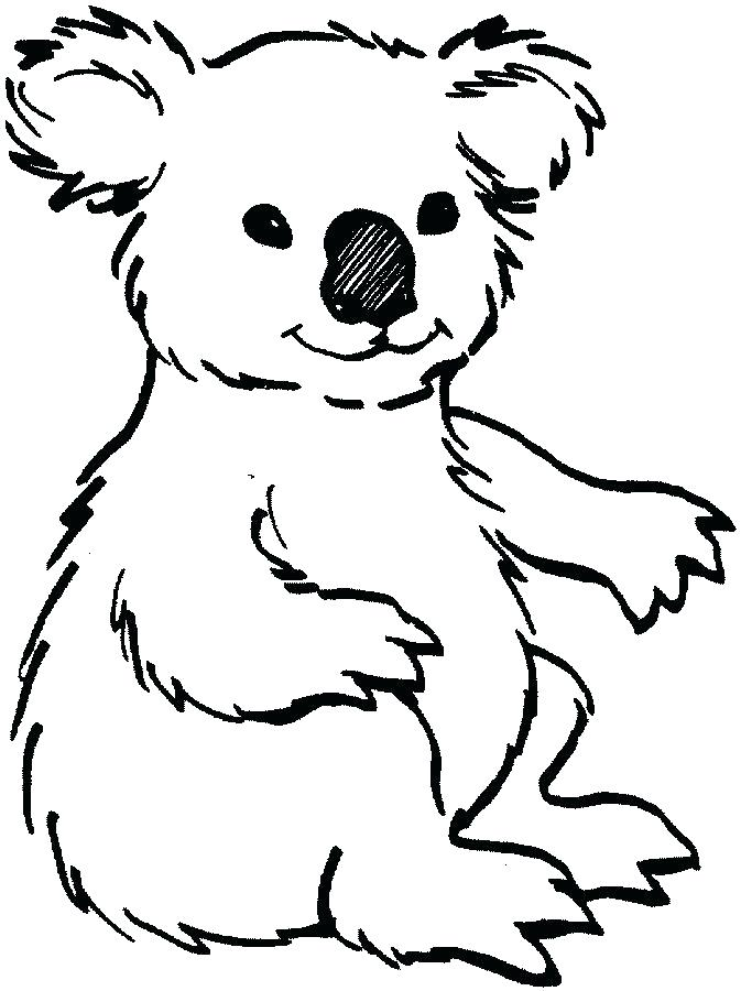 673x900 Koala Bear Coloring Page Animal Koala Bear Coloring Page Free