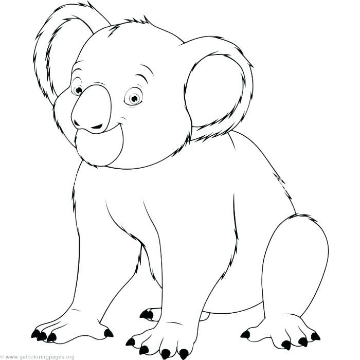 700x700 Koala Bear Coloring Pages Koala Coloring Page Realistic Koala