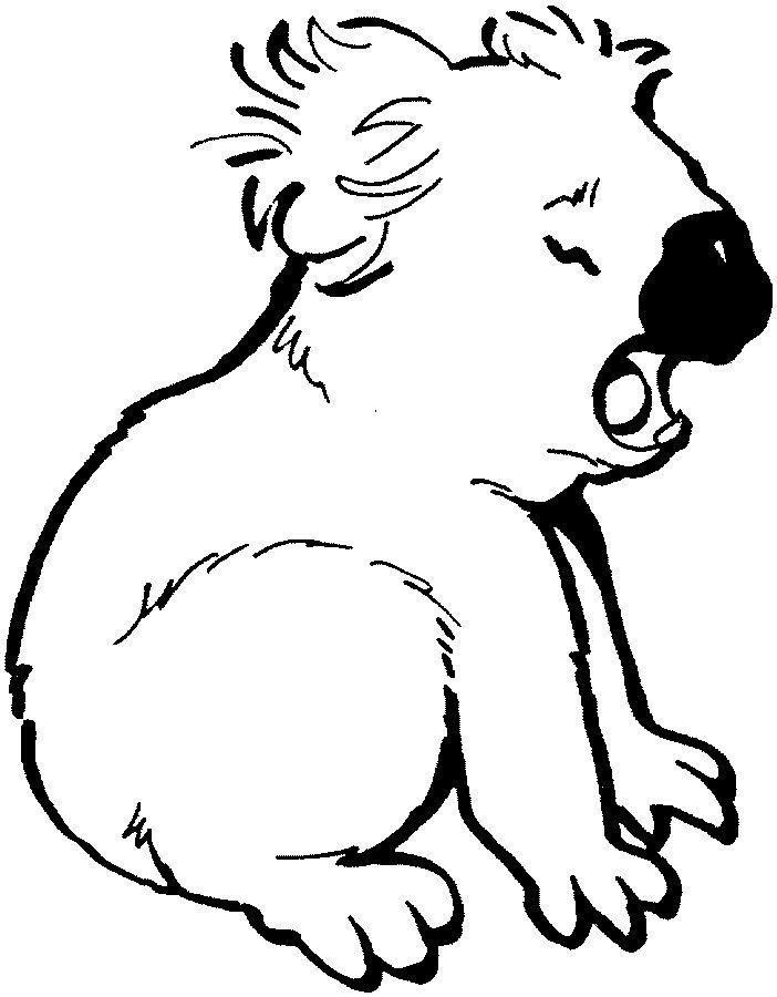 702x900 Koala Coloring Page Boy Birthday Bears, Coloring