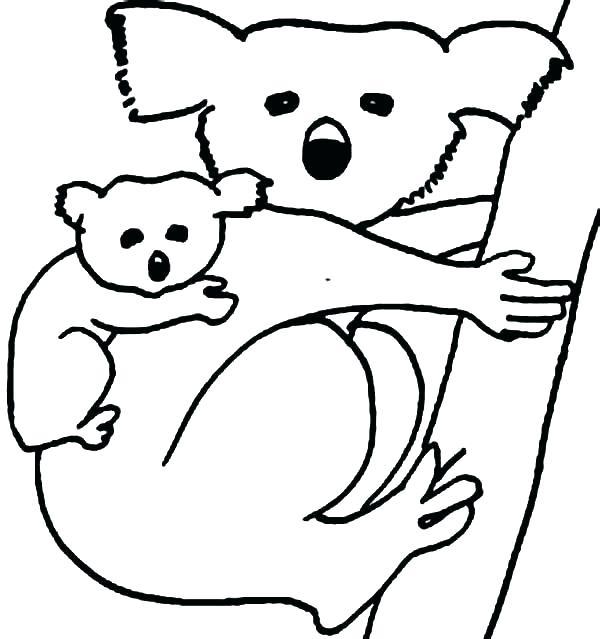 600x639 Koala Coloring Pages Koala Bear Coloring Page Koala Coloring Page