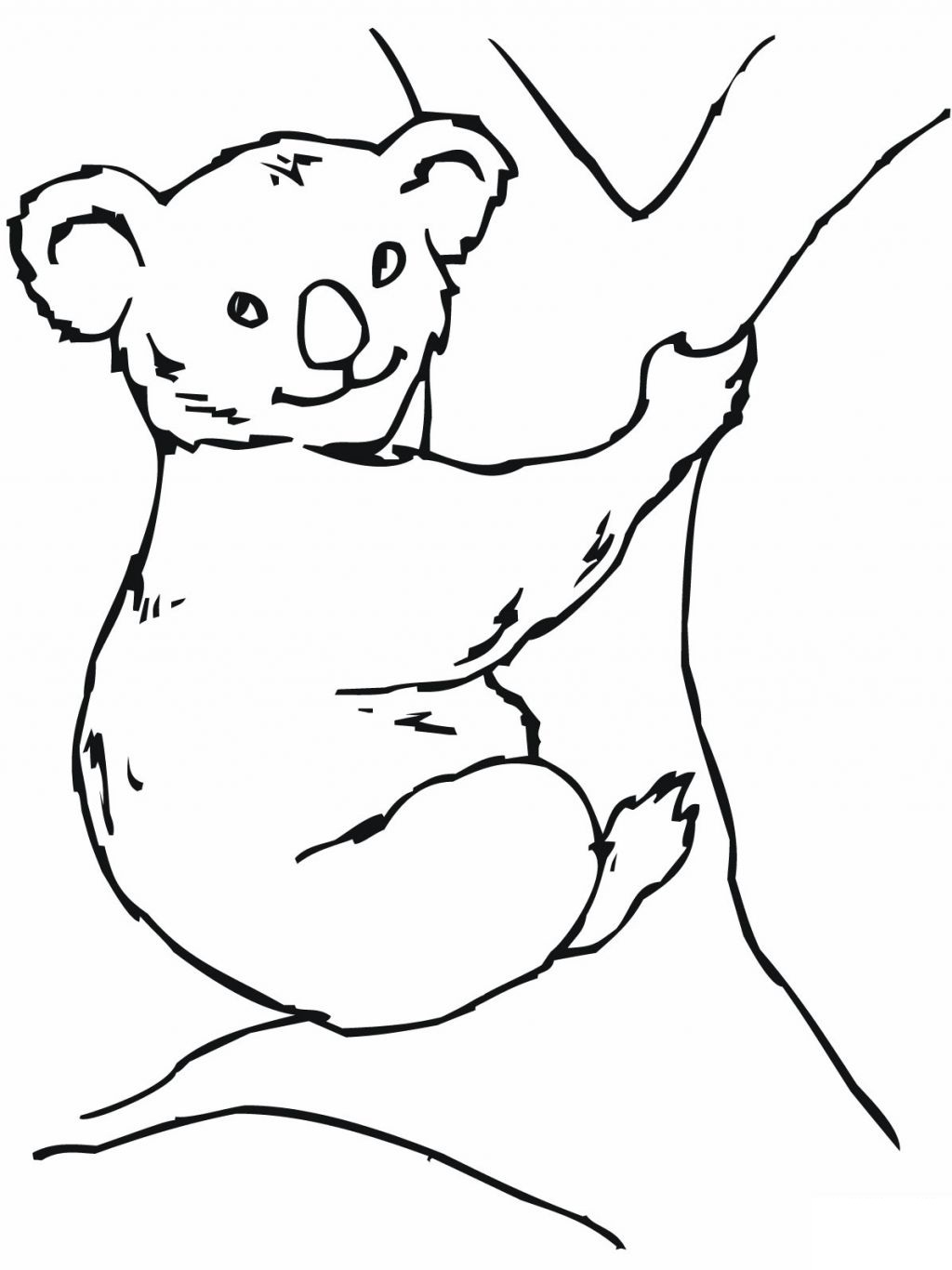 1024x1366 Koala Bear Coloring Page Free Printable Pages Unbelievable