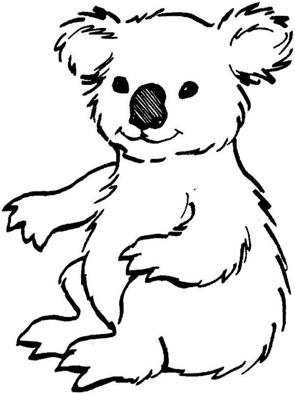 600x802 Loving Koala Bear Coloring Page Color Luna