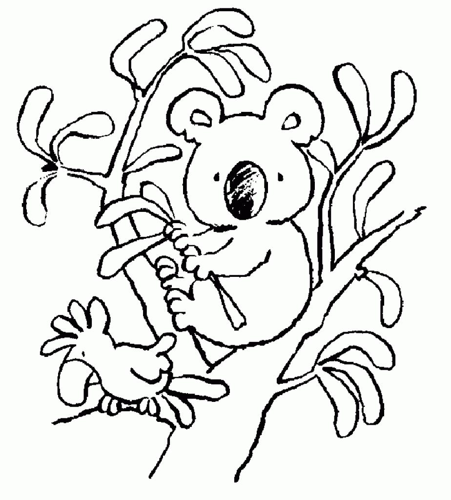 924x1024 New Koala Page To Color Design Printable Coloring Sheet