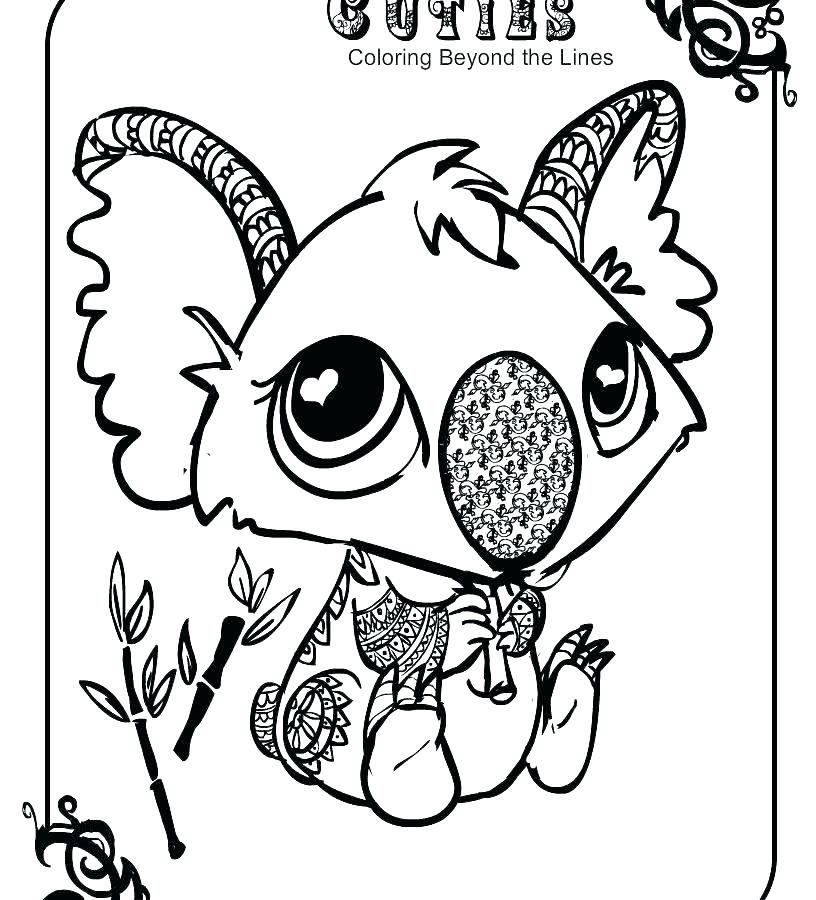 816x900 Black Bear Coloring Pages Coloring Pages Bear Koala Bear Coloring