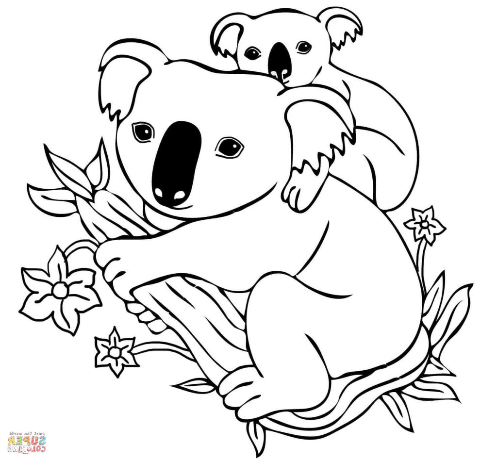 1024x950 Cool Koala Pictures To Color Unique Printable Unknown
