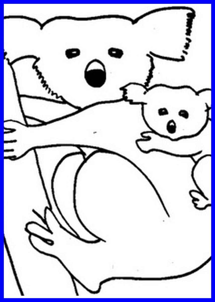 856x1199 Fascinating Printable Coloring Koala Bear Page To Of Inspiration