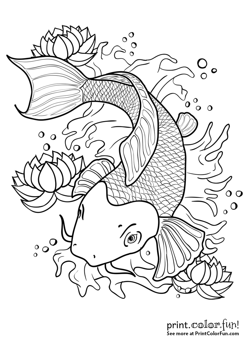 800x1100 Koi Fish In A Pond Coloring Page