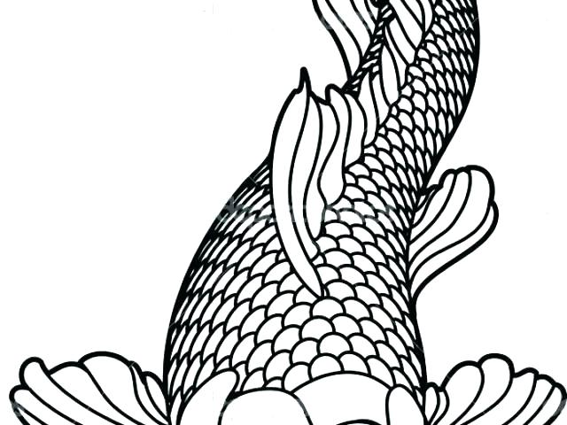 640x480 Koi Coloring Pages New Year Fish Coloring Pages Realistic Koi Fish