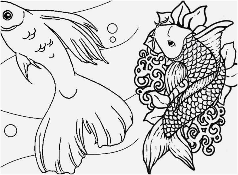 827x609 Koi Coloring Pages Shoot Best Koi Adult Coloring Pages To Print