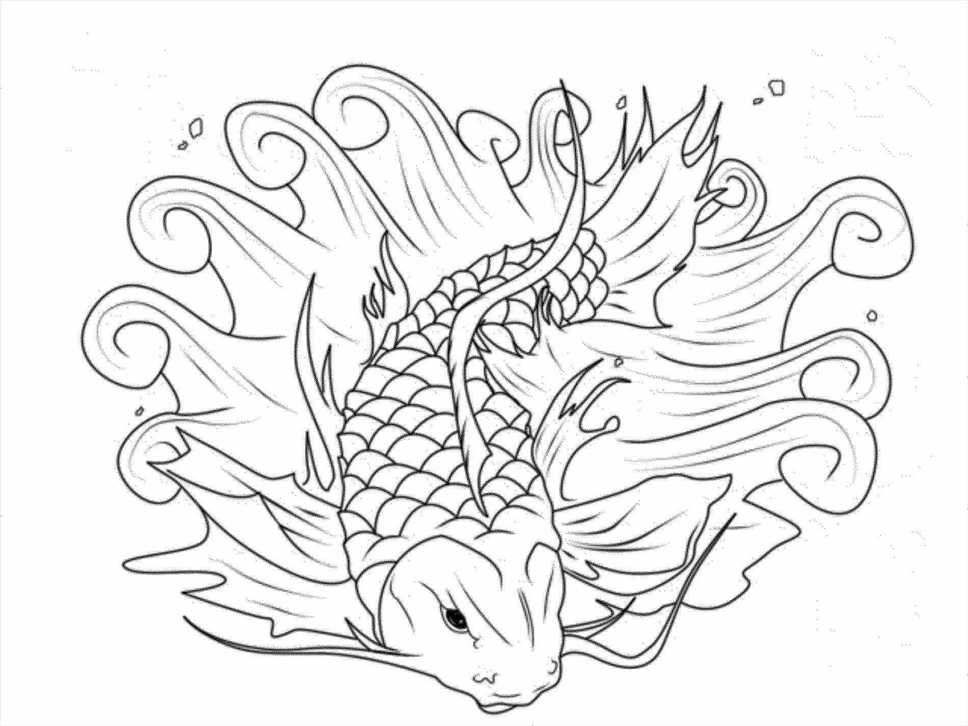 1899x1424 Koi Pond Coloring Pages Hardscaping Backyard Pond