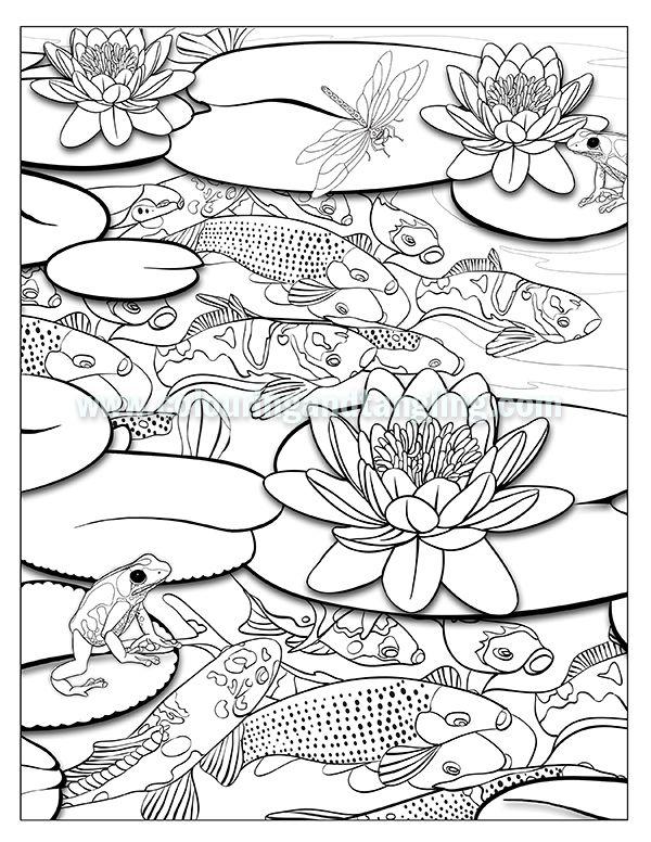 600x776 Kuvahaun Tulos Haulle Koi Pond Colouring Pages Sammakotkalat