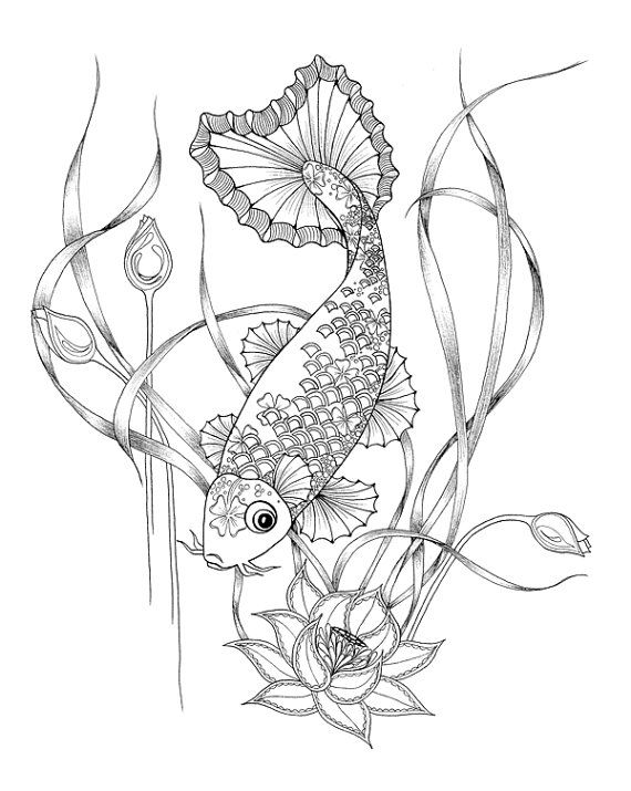 570x715 Coloring Pages Adults Digital Download Of A Koi Fish