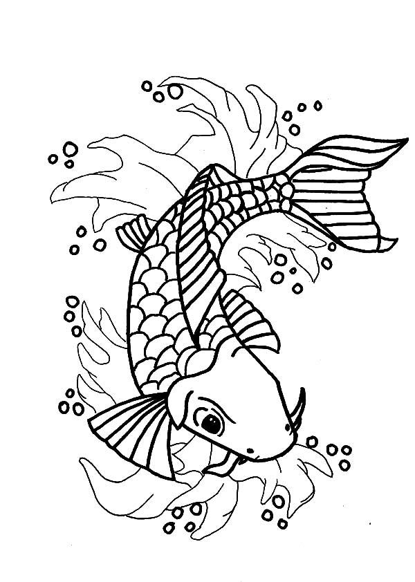 600x842 Nishikigoi Koi Fish Coloring Pages