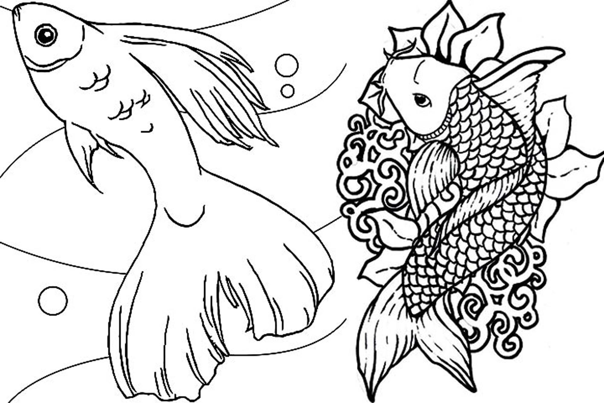 2000x1333 Remarkable Football Fish Coloring Page Japanese Koi Pages For Kids