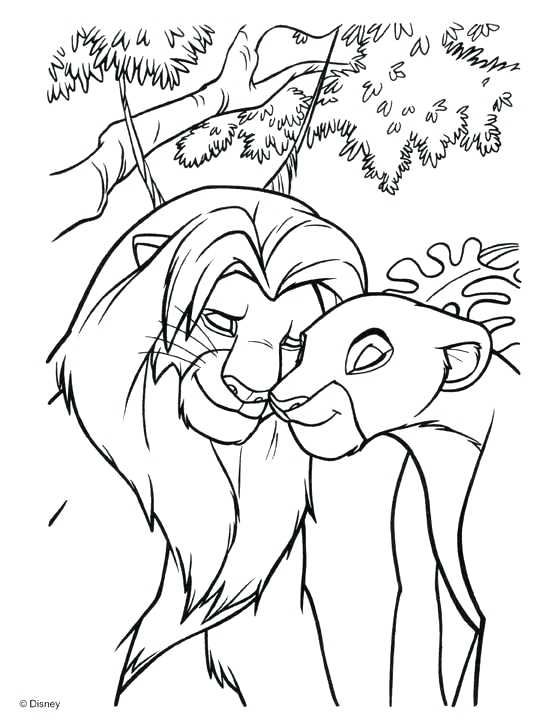 540x728 Lion King Coloring Pages The Lion King Coloring Book Lion King