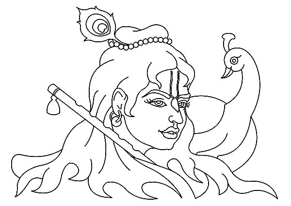 600x424 Krishna And Peacock Coloring Pages
