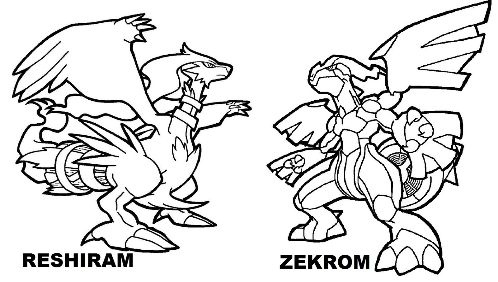 1600x908 Pokemon Reshiram And Zekrom Coloring Pages