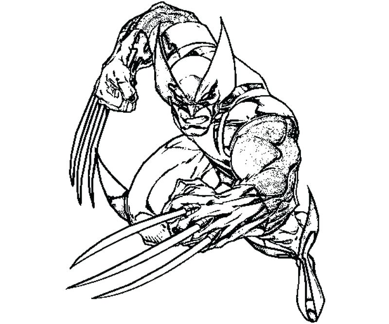 800x667 Company Coloring Page Pages For La With Company To Print Wolverine
