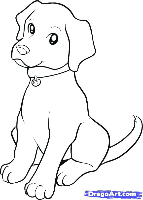 576x806 Black Lab Coloring Pages Lab Puppy Drawings Free Black Lab