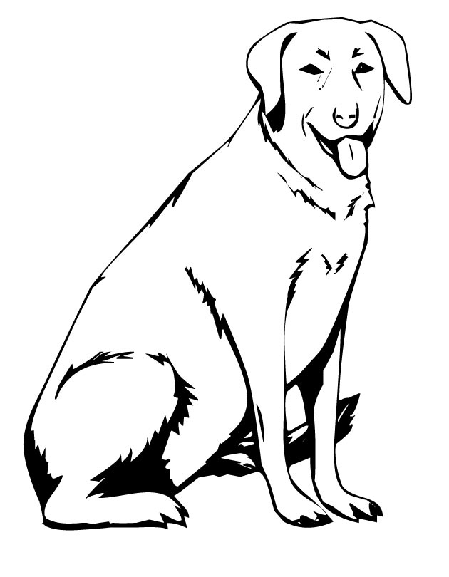 630x810 Labrador Coloring Pages Best Of Golden Retriever Step Coloring