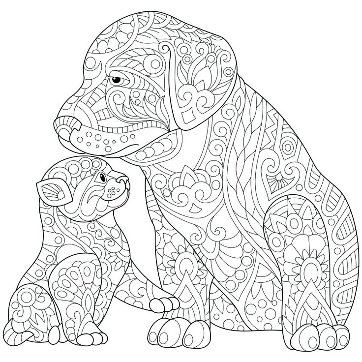 736x736 Labrador Retriever Coloring Pages Coloring Pages Collection Black