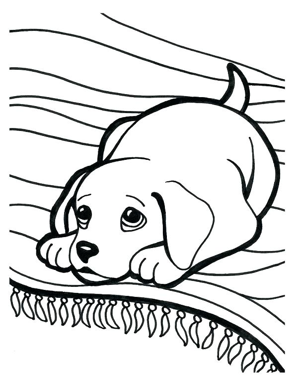 600x783 Black Lab Coloring Pages Black Lab Coloring Pages Lab Coloring