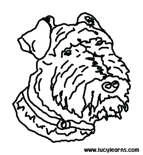 456x496 Dog Color Page Coloring Dog Dog Coloring Pages To Print Packed