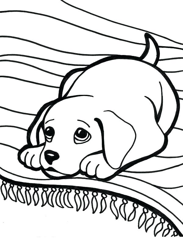 600x783 Lab Coloring Pages Black Lab Coloring Pages Excellent Coloring