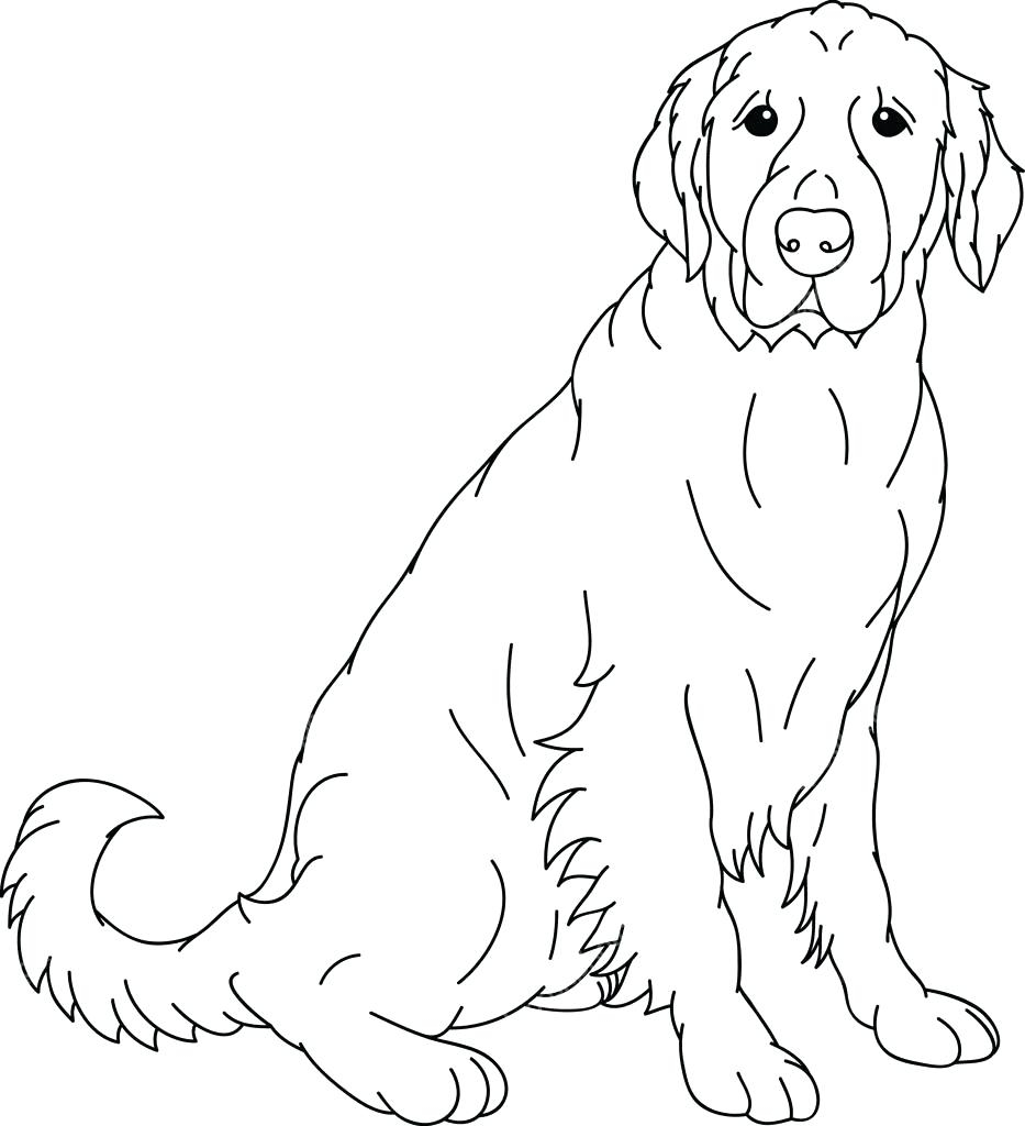 933x1024 Best Of Adult Coloring Pages Of A Dog Lab Gallery Printable