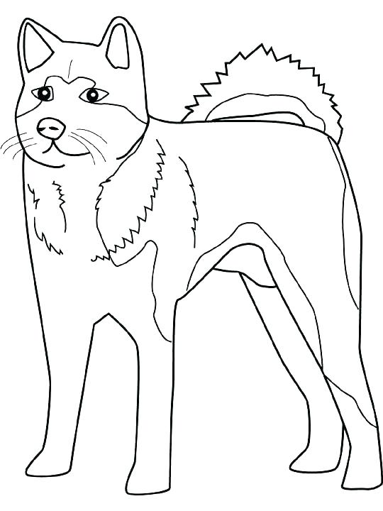 540x720 Realistic Dog Coloring Pages Realistic Dog Coloring Pages