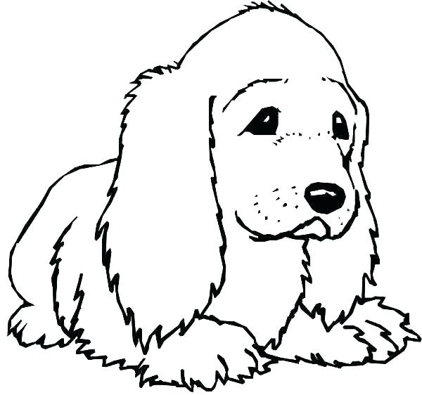 600x562 Realistic Lab Dog Coloring Pages Doggy Page Of Dogs Awesome Pag