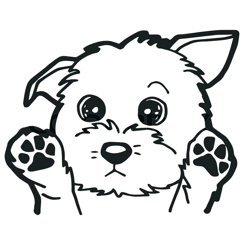 800x800 Realistic Lab Dog Coloring Pages Dogs Page Cat Free Click