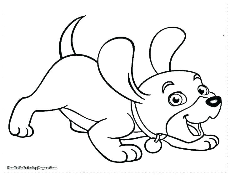 736x559 Labrador Coloring Pages
