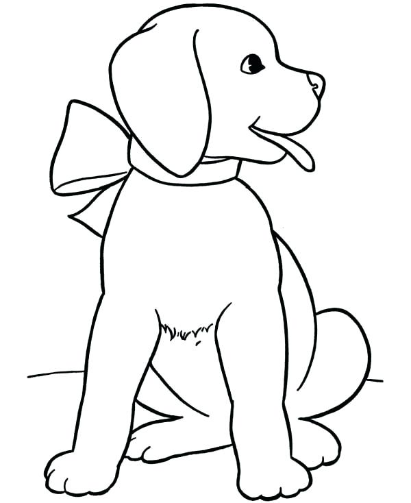 Lab Puppy Coloring Pages
