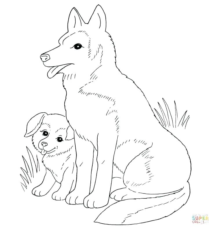 742x794 Black Lab Coloring Pages Dog Mother And Puppy Free Black Lab